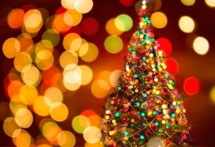 Как выбрать новогоднюю ёлочную гирлянду