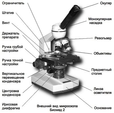 Цифровой микроскоп - устройство и принцип работы