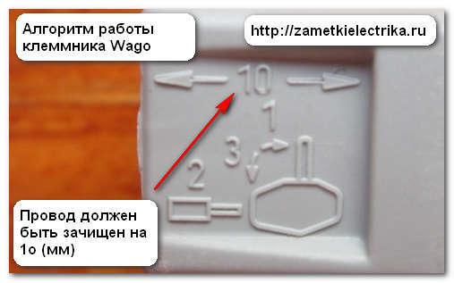 Клеммы wago: виды, характеристики, как выбрать и как правильно пользоваться