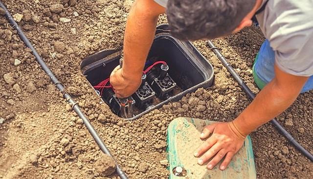 Как устроены и работают современные системы автоматического полива растений