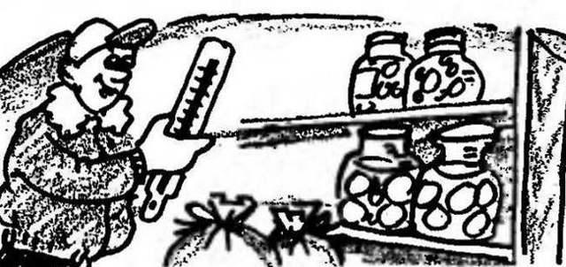Терморегулятор для погреба своими руками