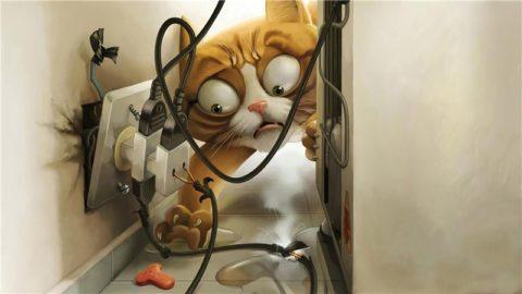 Как научить кота не грызть электрические провода