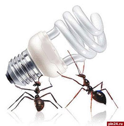 Применение энергосберегающих ламп может привести к экологической катастрофе?